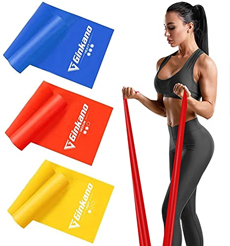 Haquno 3 Pack Exercise Resistance Bands; Set with 3 Resistance Levels;1.8M Exercise Bands Resistance for Women and Men. Ideal for Strength Training, Yoga, Pilates